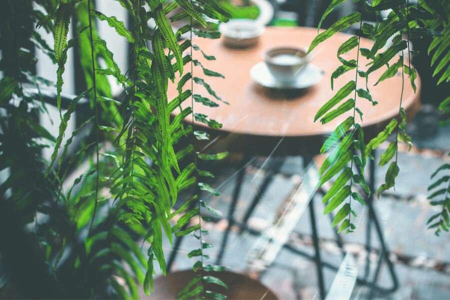 Diferencia tu restaurante con una decoración original